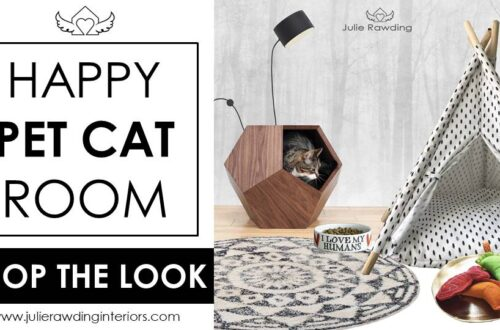 pet cat room ideas